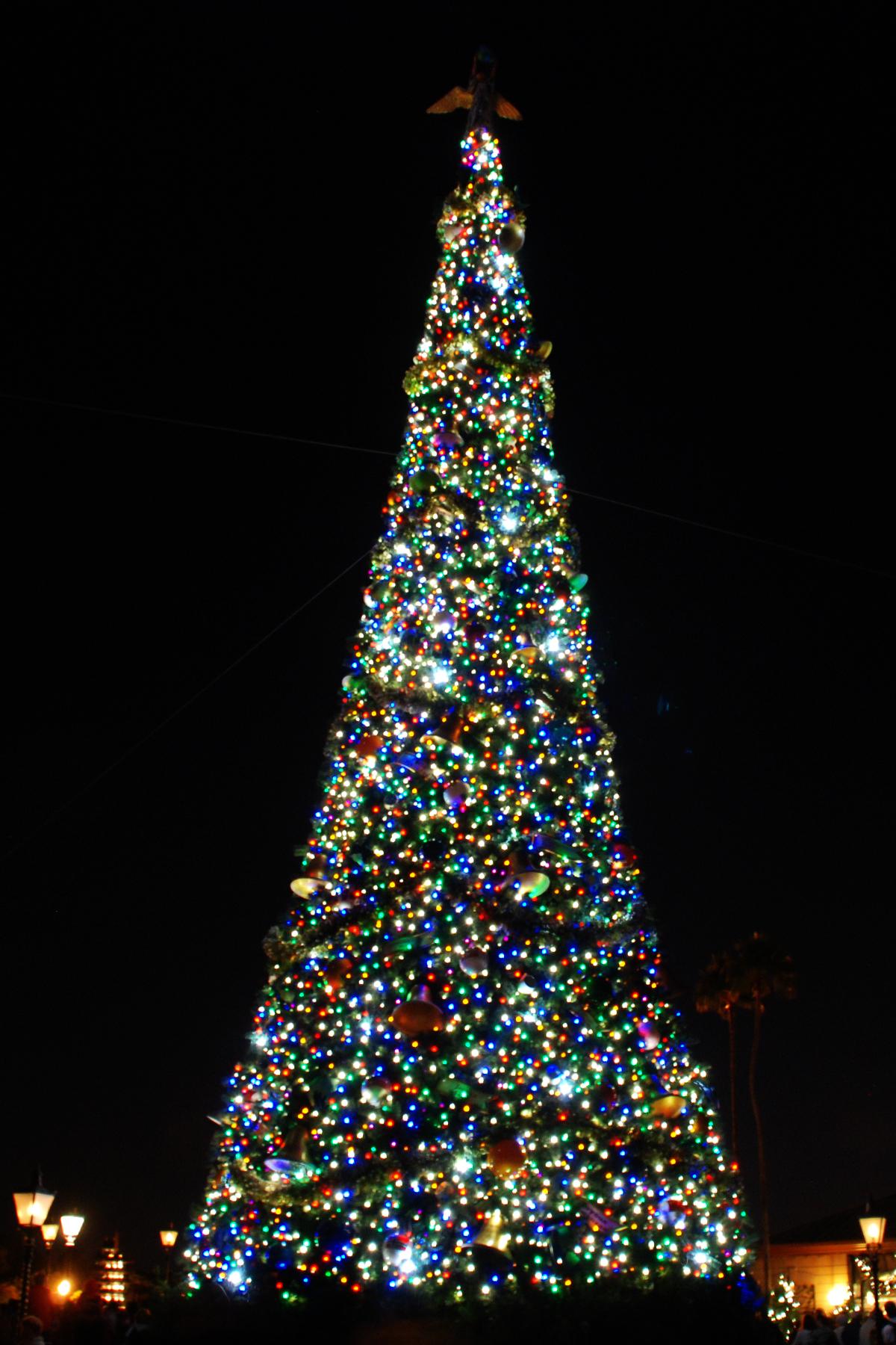 Christmas At Walt Disney World Shutterthyme S Blog