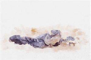 turtle digital watercolor
