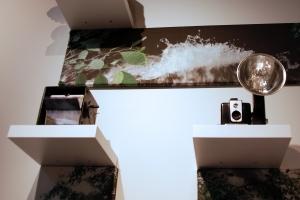 flip box and a Brownie Hawkeye camera